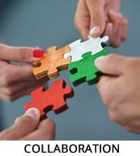 collaboration-2015
